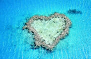 img_heart_reef_small1