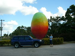 250px-rob_the_tank_and_the_big_mango http://wikitravel.org/en/Big_things_in_Australia
