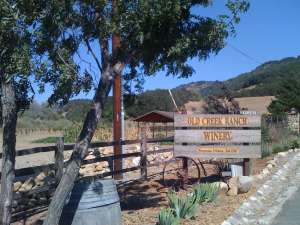 Old Creek Road Winery open 909