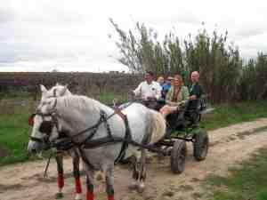 European WIne Bloggers Conf carriage ride in Tejo