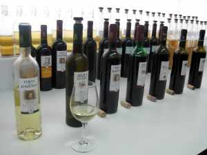 Portuguese wines from Redondo Winery tasting