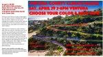AP color climateflyer